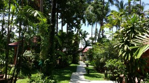 ...and inside the gates looking east down the path to my bungalow and the sea.